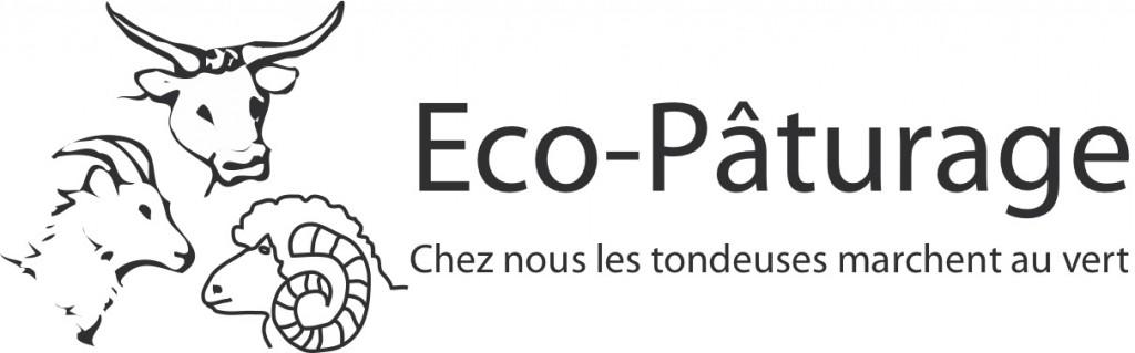 Logo eco patuage