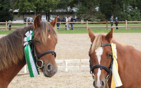 Les 2 soeurs de l'Espérance en 3ème et 4ème place.